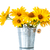 bunch of yellow daisy flowers stock photo © Peredniankina