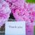 beautiful pink peonies stock photo © peredniankina