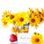 amarillo · Daisy · flores · naranja · flor - foto stock © peredniankina