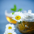 fincan · çay · beyaz · çiçek · doğa - stok fotoğraf © peredniankina