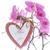 corazón · color · flores · aislado · blanco · amor - foto stock © peredniankina