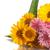 carta · spazio · testo · girasoli · fiore · design - foto d'archivio © peredniankina
