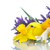 paars · witte · krokus · bloemen · gras · groep - stockfoto © peredniankina