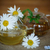 çay · fincanı · çay · demlik · gıda - stok fotoğraf © peredniankina