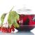 液果類 · 赤 · 葉 · 孤立した · 白 · フルーツ - ストックフォト © peredniankina
