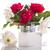 Rood · rose · geïsoleerd · witte · blad - stockfoto © peredniankina