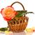 красивой · желтый · закрывается · цветок · красный · лепестков - Сток-фото © peredniankina