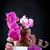 orquídea · flores · gratidão · branco · amor · fundo - foto stock © peredniankina
