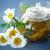 rumianek · herbaty · kubek · Daisy · kwiat - zdjęcia stock © peredniankina
