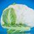 キャベツ · カリフラワー · 市場 · 新鮮な · ダイエット - ストックフォト © peredniankina
