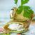 cukkini · tekercsek · sajt · bazsalikom · fenyőfa · dió - stock fotó © peredniankina