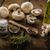 bio · чеснока · специи · грибы · домой - Сток-фото © peteer