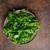 fresco · salada · bio · cordeiro · alface · saúde - foto stock © Peteer