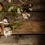 oignons · ail · herbes · bio · jardin · brut - photo stock © Peteer
