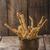 especias · horno · rústico · foto - foto stock © peteer