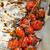 italiano · bruschetta · tomates · ajo · hierbas - foto stock © peteer