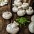groep · champignons · vergiftige · paddestoel · bos · plant · vallen - stockfoto © peteer