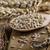 rusztikus · merítőkanál · magok · fából · készült · izolált · fehér - stock fotó © peteer