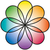 rainbow flower stock photo © peterhermesfurian