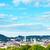 high angle view lviv stock photo © petrmalyshev