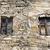 window of abandoned house stock photo © petrmalyshev
