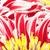 piros · krizantém · gyönyörű · virágzó · zöld · virág - stock fotó © petrmalyshev