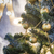 装飾 · クリスマスツリー · 浅い · フィールド - ストックフォト © Phantom1311