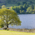 lake · district · Inghilterra · panorama · lago · Europa · silenzio - foto d'archivio © phbcz