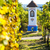 gods torture with vineyard near nechory czech republic stock photo © phbcz