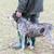 cão · de · caça · retriever · caçador · homem - foto stock © phbcz