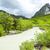 谷 · 川 · 春 · フランス · 水 · ツリー - ストックフォト © phbcz