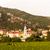 ワイン · 地域 · オーストリア · 建物 · 風景 - ストックフォト © phbcz