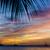 zonsondergang · caribbean · zee · Grenada · landschap · palm - stockfoto © phbcz