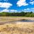 tranquillità · natura · pacifica · acqua · pulita · splash · bellezza - foto d'archivio © phbcz