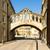 puente · oxford · vista · ciudad · Inglaterra · arquitectura - foto stock © phbcz