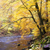rio · outono · República · Checa · água · floresta · natureza - foto stock © phbcz