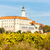 mikulov with autumnal vineyard czech republic stock photo © phbcz