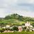 ruins of falkenstein castle lower austria austria stock photo © phbcz