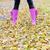 szczegół · kobieta · jesienny · charakter · czarny · kobiet - zdjęcia stock © phbcz