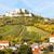 vinha · baixar · Áustria · folha · campo · verde - foto stock © phbcz