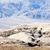 dood · vallei · park · Californië · USA · landschap - stockfoto © phbcz