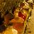 natürmort · Çek · Cumhuriyeti · şarap · gözlük · peynir - stok fotoğraf © phbcz