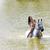 lovas · lovaglás · víz · nő · ló · bikini - stock fotó © phbcz