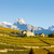 vineyards below church at conthey sion region canton valais s stock photo © phbcz
