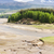 landscape near loch laggan highlands scotland stock photo © phbcz