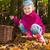 geïnfecteerde · eetbaar · champignon · voedsel · hout · natuur - stockfoto © phbcz