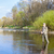 女性 · 釣り · 川 · リラックス · 女性 · 立って - ストックフォト © phbcz