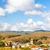 pueblo · vina · Francia · edificio · aumentó · viaje - foto stock © phbcz