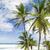 bathsheba eastern coast of barbados caribbean stock photo © phbcz