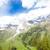 Alpok · Ausztria · tájkép · utazás · hegyek · Európa - stock fotó © phbcz